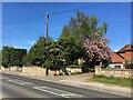SK5888 : Blyth Road, Oldcotes by Graham Hogg