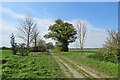 TL5161 : Late April in the Cambridgeshire Fens by John Sutton