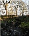 NH4941 : Rose Bridge, Culburnie Burn by Craig Wallace