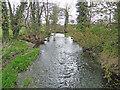 TM2481 : Weybread water mill tail race by Adrian S Pye