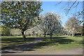 TF0920 : Cherry Blossom on the Wellhead by Bob Harvey