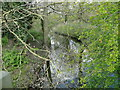TM1379 : Frenze Beck from Frenze Bridge by Adrian S Pye