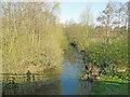 TM1478 : River Waveney upstream from the A140 bridge by Adrian S Pye