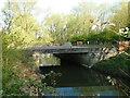 TM1478 : The Old Scole Bridge by Adrian S Pye