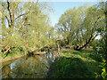 TM1478 : River Waveney in reflective mood by Adrian S Pye