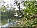 TM1478 : Looking downstream beneath the A143 bridge by Adrian S Pye