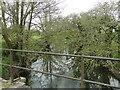 TM2179 : Upstream from the bridge at Brockdish by Adrian S Pye