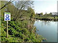 TM2281 : Portage point on the River Waveney by Adrian S Pye