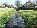 TA0472 : Chalk stream, Wold Newton by Christine Johnstone