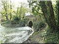 TM2179 : Relief channel bridge at Syleham by Adrian S Pye
