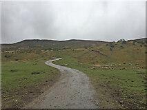 NH7824 : Farm track by thejackrustles