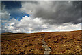 SD8698 : Erosion control on the Pennine Way by Andy Waddington