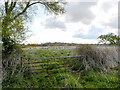 TG3426 : Rough Pasture with old Bales by David Pashley