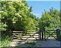 TQ5401 : Gate to Lullington Heath National Nature Reserve by PAUL FARMER
