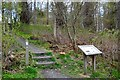 NT4628 : Path and information board, Selkirk Castle site by Jim Barton