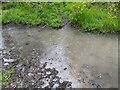 TF0820 : Raindrops and ripples by Bob Harvey