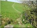 SD2784 : Beck near Keldray Farm by Adrian Taylor