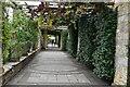 TQ4845 : Hever Castle Gardens by N Chadwick