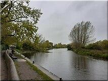 TL2870 : River Great Ouse by Matthew Chadwick