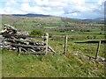 SO1323 : Fence and walk on Allt yr Esgair by Philip Halling
