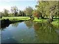 TM2956 : The millpond at Glevering watermill by Adrian S Pye