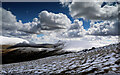 NY2728 : SE slopes of Sale How by Andy Waddington