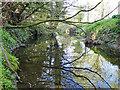 TM2160 : River Deben downstream at Ashfield by Adrian S Pye