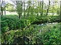 TM2260 : River Deben downstream at Cretingham bridge by Adrian S Pye