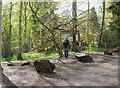 NT5268 : Entrance to Gifford Community Woodland by Jim Barton