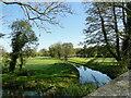 TM2956 : River Deben upstream from Glevering Bridge by Adrian S Pye