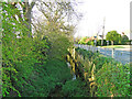 TM1762 : River Deben tributary beside the B1077, Winston Road by Adrian S Pye