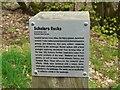 NS5575 : Information panel - Scholars Rocks by Richard Sutcliffe