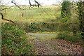 SX7671 : Footpath between Place and Waye Farm by Derek Harper