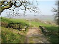 SD2785 : Bridge on The Cumbria Way by Adrian Taylor