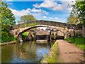 "SJ9097 : Ashton Canal, ""The Camel's Hump"" by David Dixon"