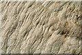NU0151 : Sea foam on Spittal Beach by Walter Baxter