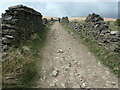 SD9613 : Climbing up towards Binns Pasture by Christine Johnstone