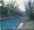SP9312 : Tring - Grand Union Canal - Milky blue water by Rob Farrow
