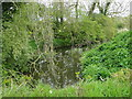TM1862 : Upstream from a farm bridge by Adrian S Pye