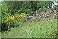 SO3506 : Gate on footpath, Usk Valley Walk by M J Roscoe