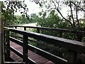 SP3484 : Footbridge over River Sowe, Ash Green by Alan Paxton