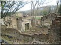 NZ1356 : Ruined Steel Worker's Cottages and Fireplace by Les Hull