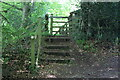 SO3507 : Steps to rear of garden fence of The Beeches by M J Roscoe