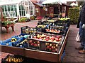 SP2764 : Fruit on sale at Hill Close Gardens by Alan Paxton