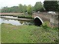 TM2950 : Upstream at Wilford Bridge, Woodbridge by Adrian S Pye