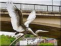 NZ2742 : Heron, Watergate Riverside by David Dixon
