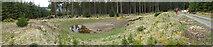 NJ3545 : Artificial Pond by Anne Burgess