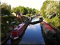 SP2765 : Saltisford canal arm, Warwick by Alan Paxton