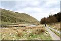 NY5603 : Right bank track in Borrowdale by Andy Waddington