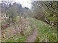 NS5479 : Blane Valley Railway by Richard Webb